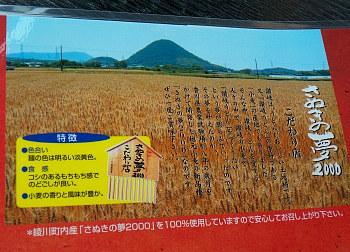 11高松さぬきの夢2000.jpg