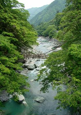 20徳島かずら橋遠景.jpg