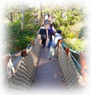 23トムソーヤ島吊り橋.jpg