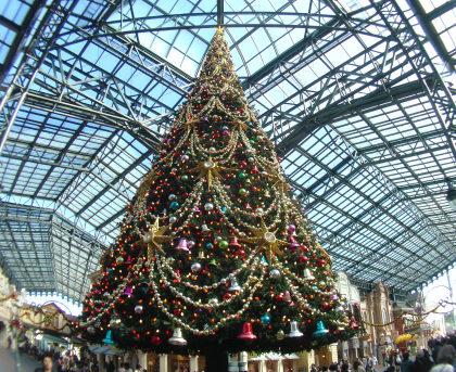 76植栽その1クリスマス(笑).jpg
