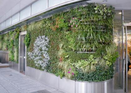 07浜松駅前壁面緑化.jpg