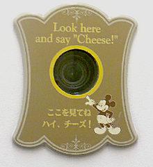 30年パス用カメラ.jpg