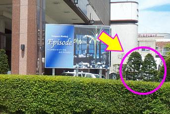 48盛岡バスかな.jpg